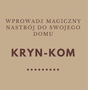 sklep z kominkami krynkom.pl